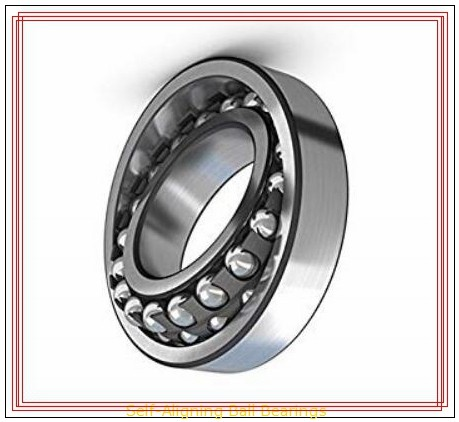 RBC DSP4FS464 Self-Aligning Ball Bearings