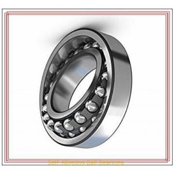 RHP NLJ 1-1/4 Self-Aligning Ball Bearings