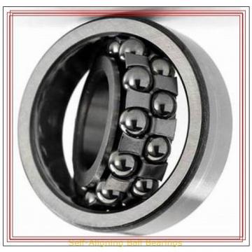 NSK 1207 TNG Self-Aligning Ball Bearings