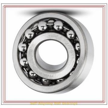 NSK 1302 TN Self-Aligning Ball Bearings