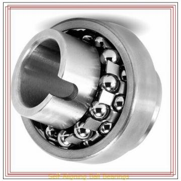 NSK 1306 TN Self-Aligning Ball Bearings