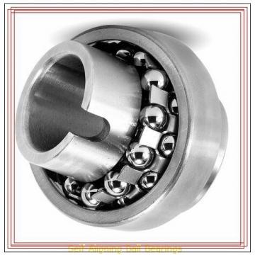 NSK 2306 TN Self-Aligning Ball Bearings